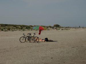 spiaggia del delta del Po, Giardino botanico di Porto Caleri, Rosolina Mare